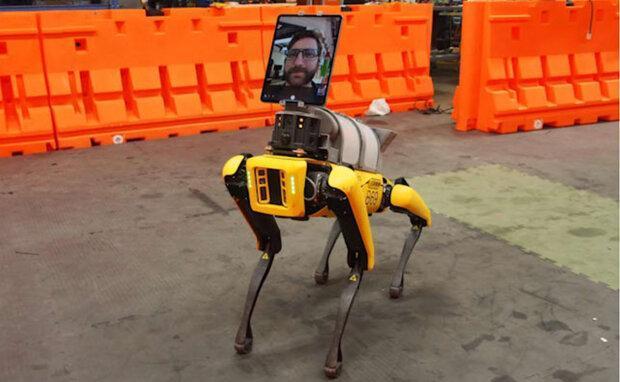 رباتی که از کادر درمان در مقابل کرونا محافظت می نماید