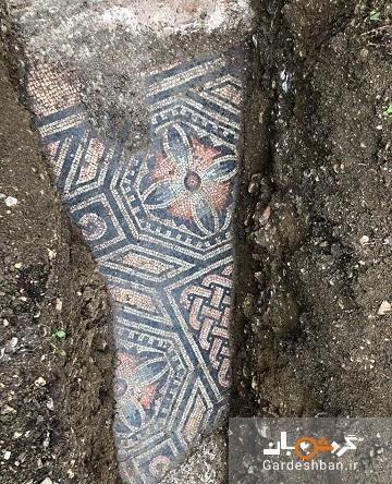 کشف موزاییک های باستانی از زمان روم باستان در زیر یک تاکستان در ایتالیا