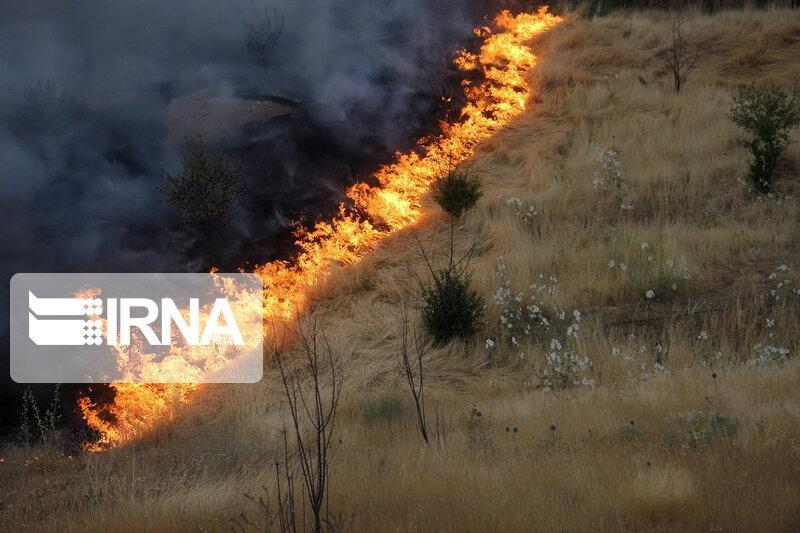 خبرنگاران پیش بینی تمهیدات لازم برای جلوگیری از آتش سوزی مراتع و جنگل ها