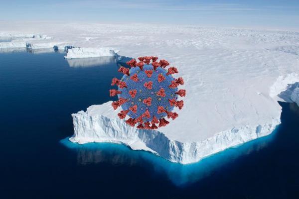 کرونا به قطب جنوب هم رسید ، از بین رفتن شانس ایمنی گله ای با ویروس انگلیسی