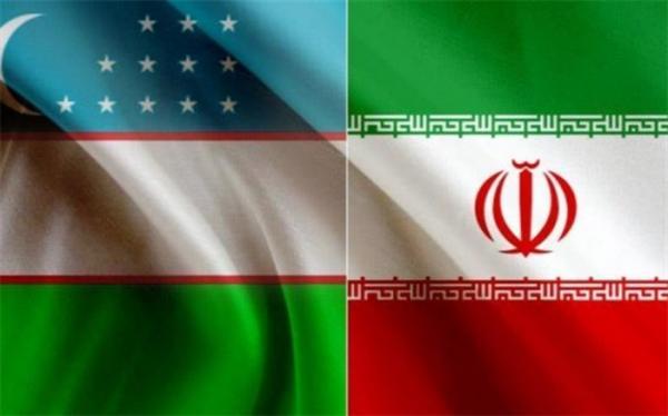 رایزنی معاونان وزرای خارجه ایران و ازبکستان درباره همکاری مشترک