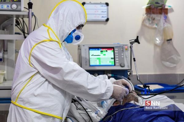 49 بیمار مبتلا به ویروس انگلیسی در مازندران شناسایی شدند خبرنگاران