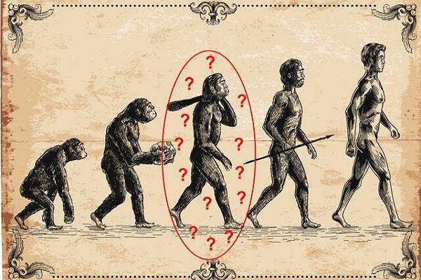 اجداد انسان میمون ها نیستند