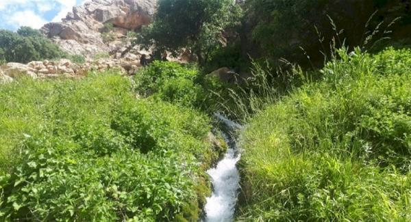 گلچینی از زیبایی های آفرینش در شهرستان مارگون